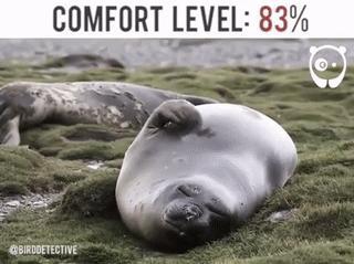 Уровень комфорта