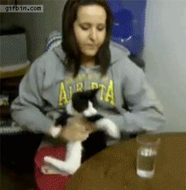 Отдай мой стакан!