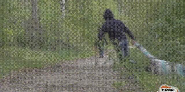 Вот и ходи после этого по парку