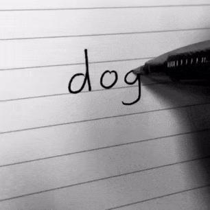 Урок как быстро нарисовать собаку